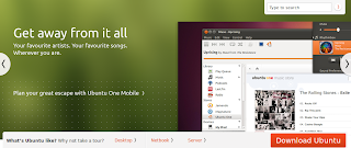 Ubuntu 10.10 can play mp3, video, flash