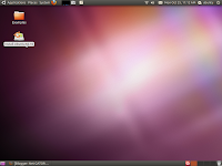 Ubuntu 10.10 (Maverick Meerkat) installation process start
