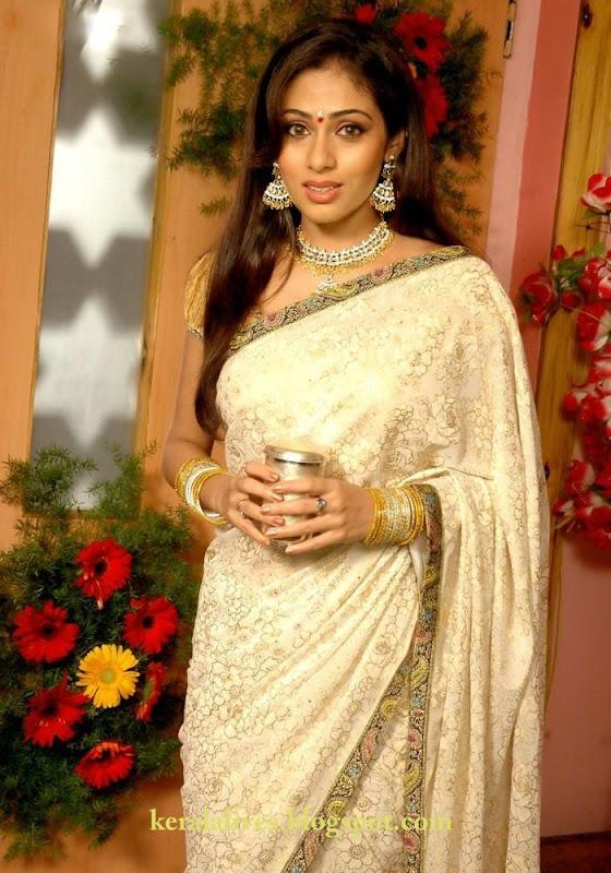 South Indian Sexy Sadha Showing Chubby Navel Amazing Photoshoot Photoshoot images