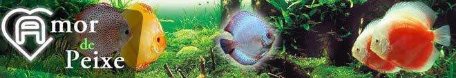 Fórum de Acará Disco Amor de Peixe