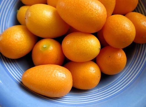 Foy Update How To Eat And Prepare Kumquats Watermelon Wallpaper Rainbow Find Free HD for Desktop [freshlhys.tk]