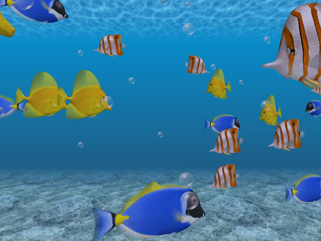 3d wallpapers 3d desktop wallpaper free 3d wallpapers for 3d fish wallpaper