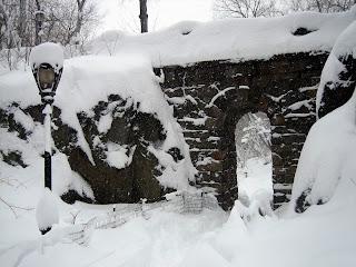 Central Park Snow Storm
