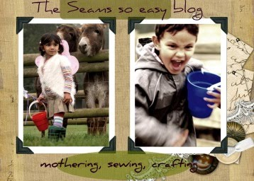 The seamsoeasy blog...