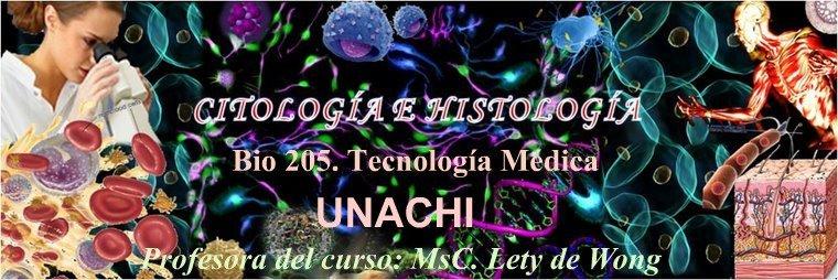 Estudiantes de Tecnología Médica II Año UNACHI 2009