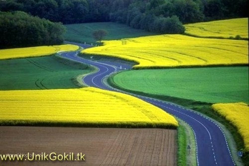 www unikgokil tk 29 foto jalan wisata terindah di dunia nyesel kalo