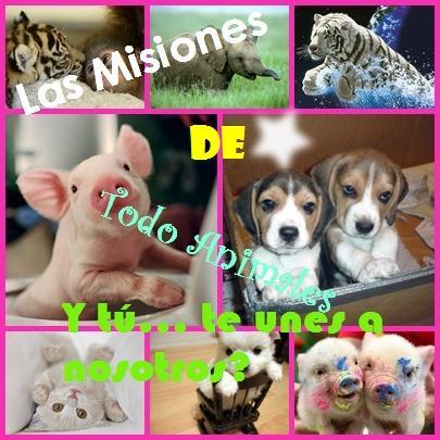 Las misiones de Todo Animales