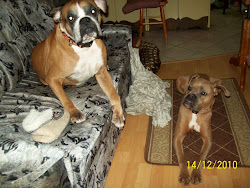 Mój Maxik i Nutka