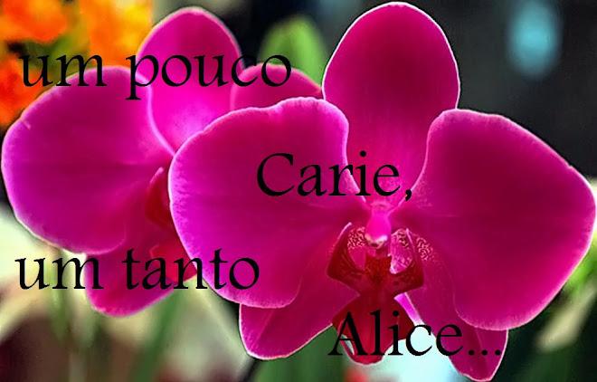 Um pouco Carie, um tanto Alice