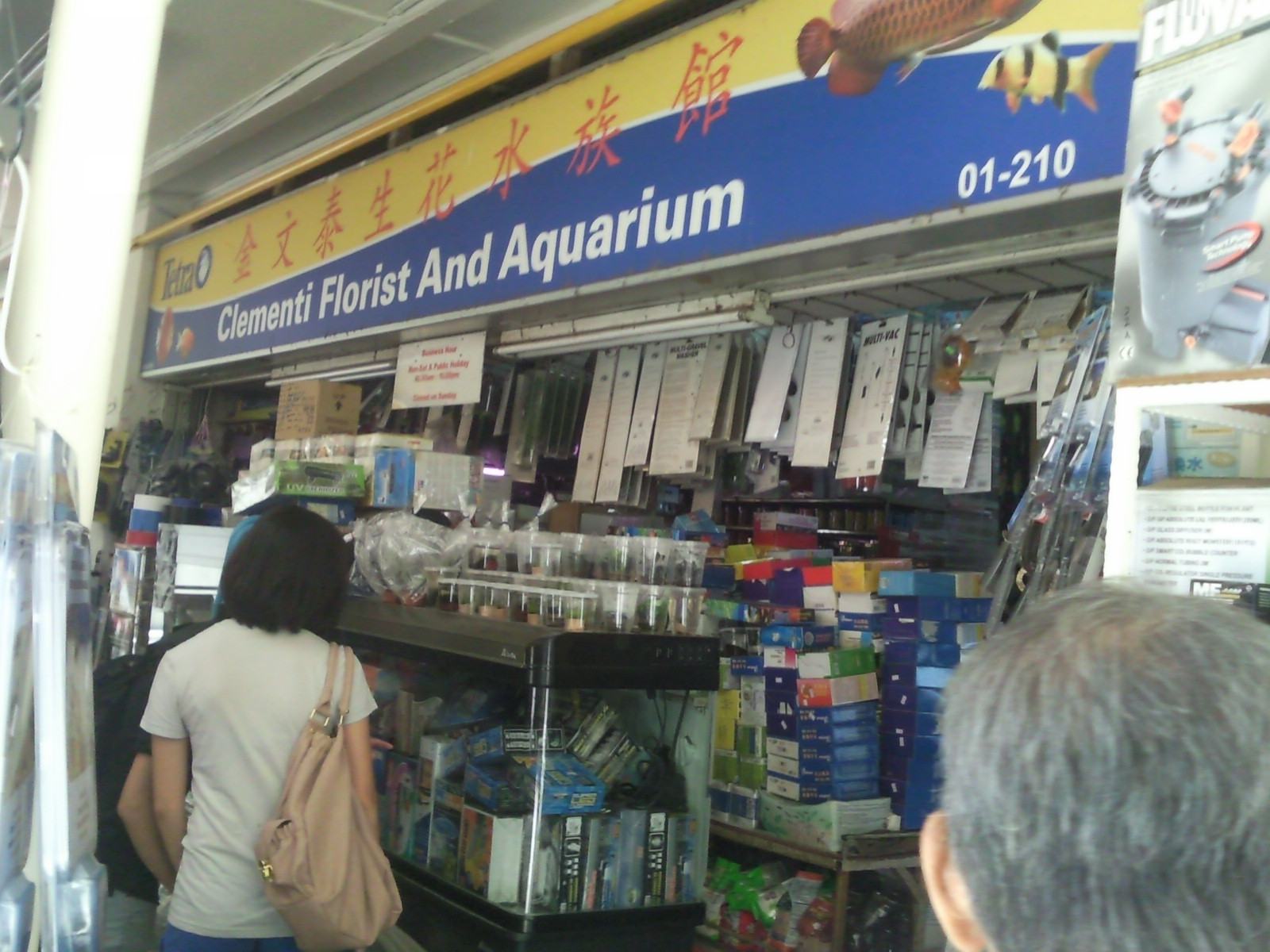 Fish aquarium business - It Is During This Initial Stage That Mr Toh Started Toying With Fishes And Hence Begin To Learn About Tropical Fishes His Hard Work And Perseverance Paid