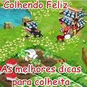 Colheitafeliz, o site de dicas para Colheita Feliz