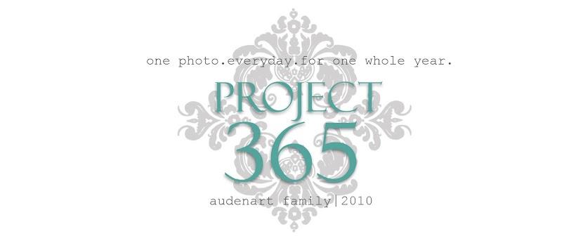 audenart family project 365