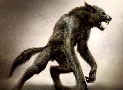 Le mystère de la bête du Gévaudan affiche