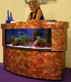 beautiful fish tanks