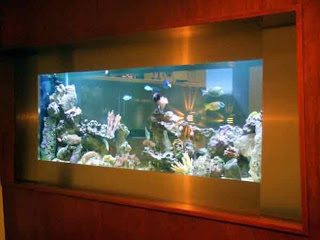 Creative Design fish tank