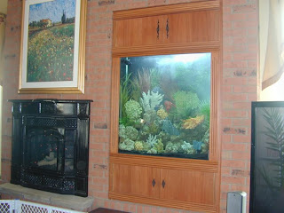 beautiful fish tank design
