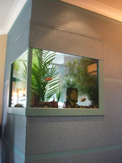 Creative aquarium fish tank design