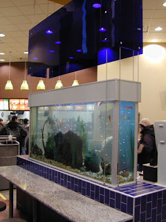 amazing Fish tank Furniture
