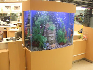 stylish Aquarium Furniture