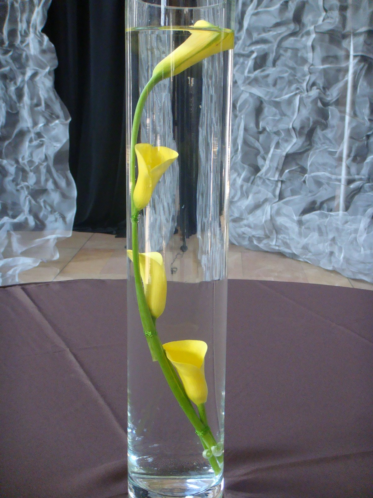 http://2.bp.blogspot.com/_JNOXKSOMWCw/TJ4Yzr_rj8I/AAAAAAAAAE4/_oO5VlWpuss/s1600/calla-lily-submerged-yellow-cylinder.jpg