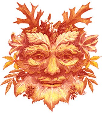 illustration of harvest face mask, aka the green man