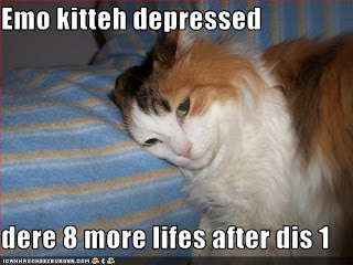 LOLcat picture of calico cat lying down. caption says emo cat depressed, 8 more lives after dis