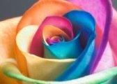 ..arcobaleno..