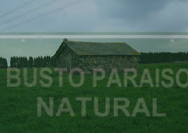 BUSTO PARAISO NATURAL