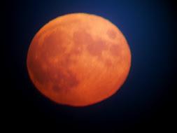 Månen i rødt