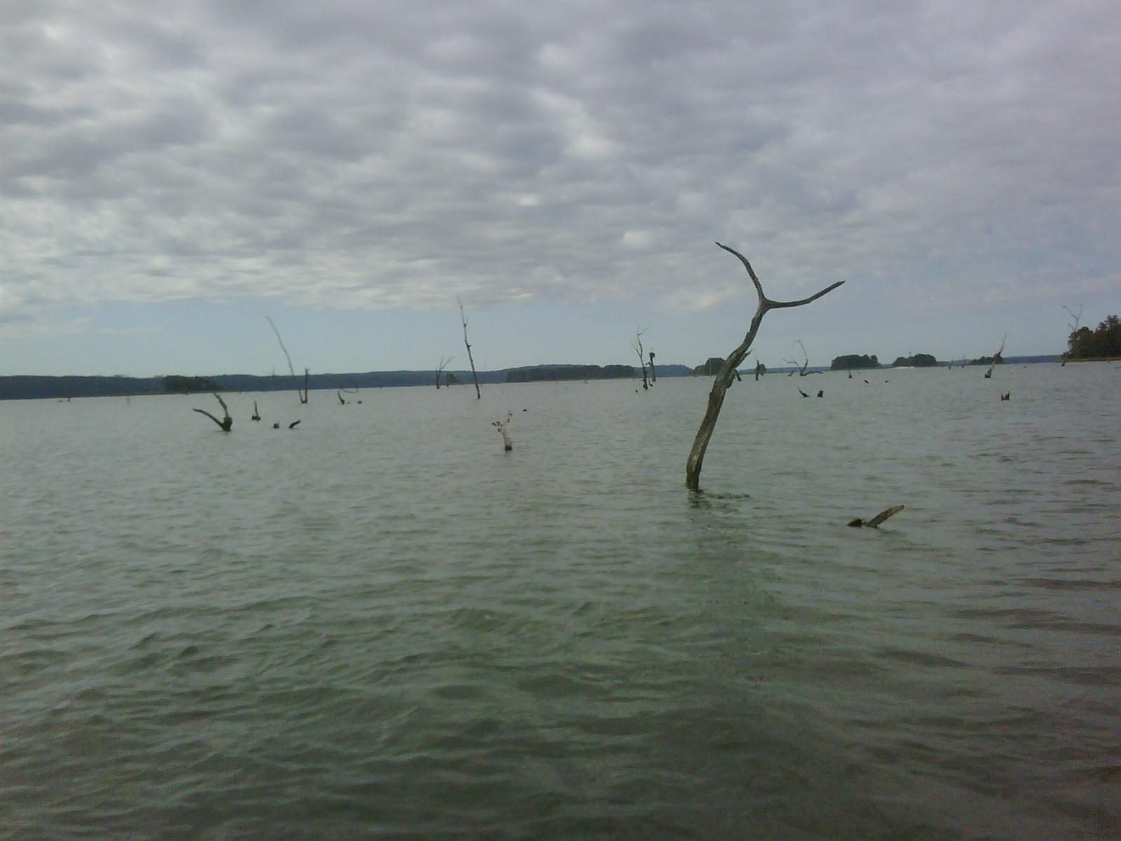 T brinks fishing may 2010 for Lake seminole fishing