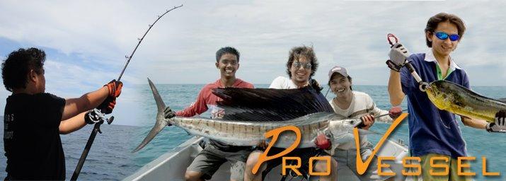 Kuala Rompin - Sailfish Fishing