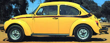 1973 Sports Bug-Sport Beetle