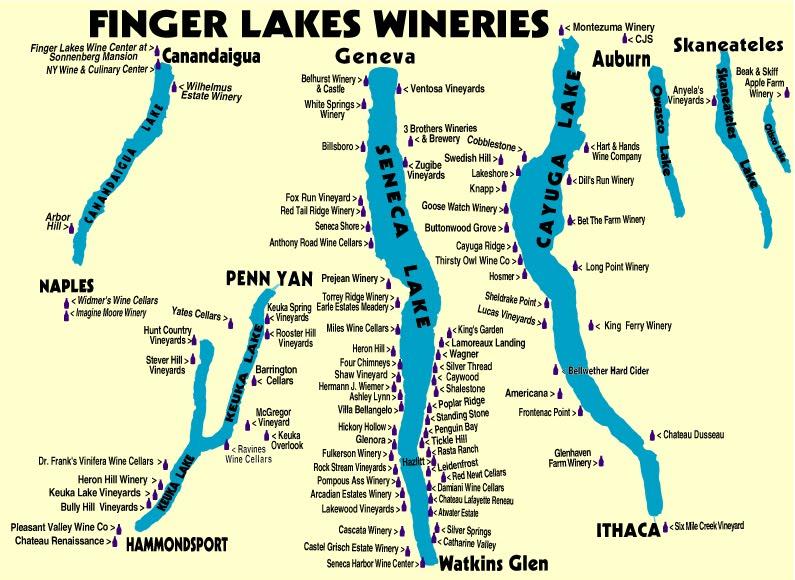 Seneca Lake Vineyard Tours