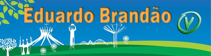 Eduardo Brandão do PV
