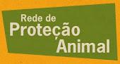 Curitiba cuidando dos animais
