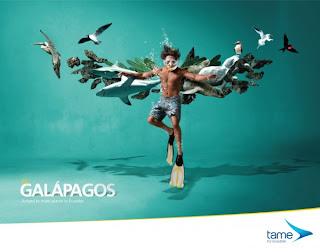 AD Campaign  photo