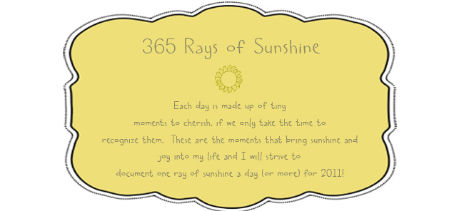 365 Rays of Sunshine