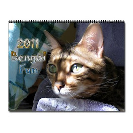 We has a 2011 Calendar!