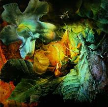 Saint Gabriel:  Annunciation to a Leaf Insect