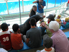 Visita ao Jardim Zoológico