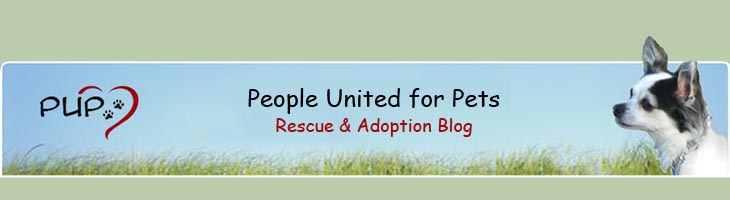People United for Pets (PUP) - Rescue and Adoption Blog