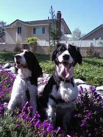 My friends wyatt and Tucker!