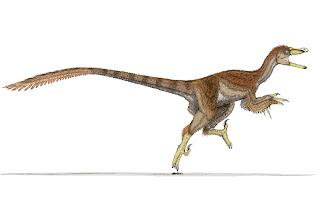 http://2.bp.blogspot.com/_JZcYwQVaoNI/TMx-HpcZRHI/AAAAAAAAAcE/ga9T696svVM/s1600/Velociraptor_in_color_by_Ahrkeath.jpg