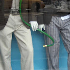 Snake in the Garden - In the window nearly two years ago at Rothman's Union Square.