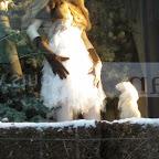 Mesmerized - In Bergdorf Goodman`s 2009 holiday windows.