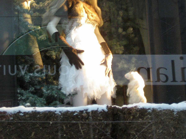 Mesmerized - In Bergdorf Goodman`s 2009 holiday windows.