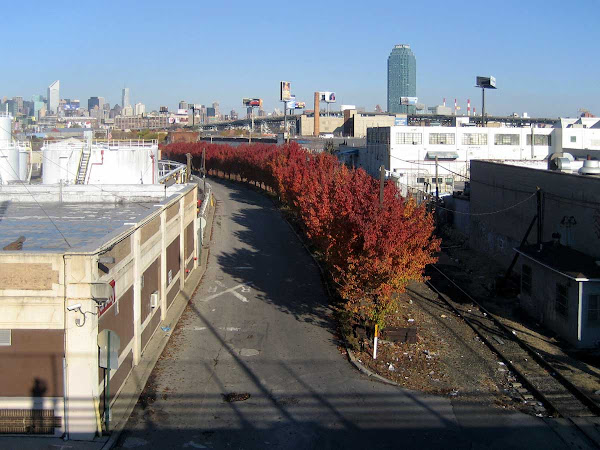 Red Tree Line - From the Greenpoint Ave. bridge into Blissville, Queens.
