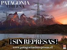 NO  a la construccion de represas en patagonia.