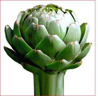 Dr ahmet maranki rahim ve göğüs kanseri icin şifalı bitkiler