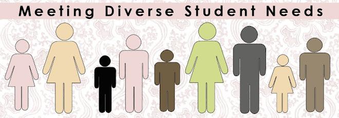 Meeting Diverse Student Needs